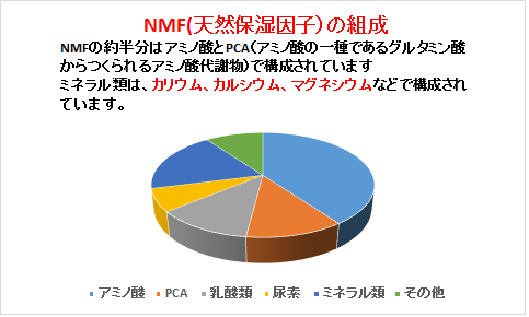 NMF(天然保湿因子)の組成 アミノ酸で構成